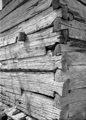 Notched log corner - Stencil House, Smokehouse, Clifton, Wayne County, TN image. Click for full size.