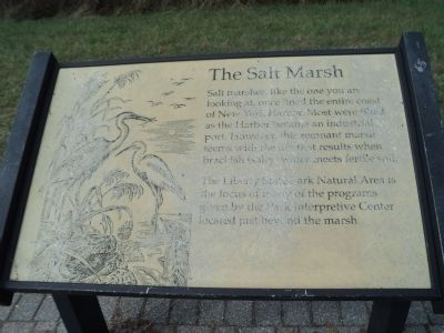 The Salt Marsh Marker image. Click for full size.