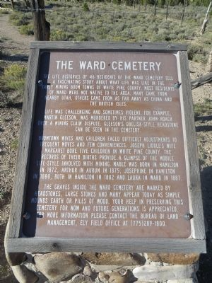 The Ward Cemetery Marker image. Click for full size.