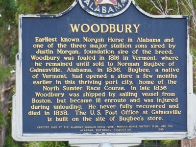 Woodbury Marker image. Click for full size.
