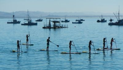 A group of paddleboarders enjoying a day on the bay image. Click for full size.