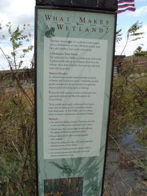 What Makes Wetlands?	 Marker image. Click for full size.