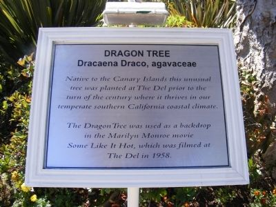 Dragon Tree Marker image. Click for full size.