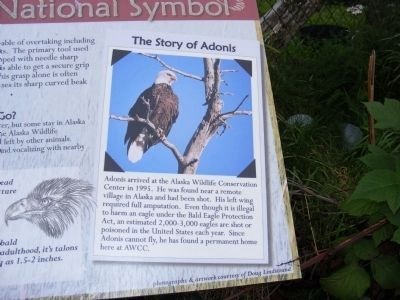 Our Living National Symbol Marker image. Click for full size.
