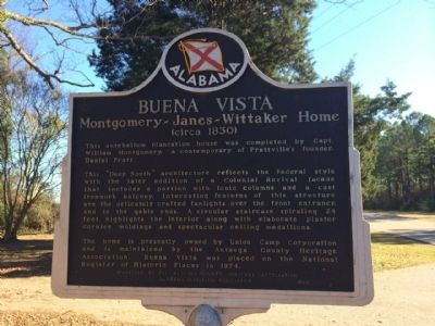 Buena Vista Marker image. Click for full size.