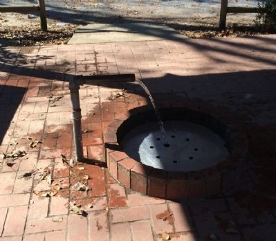 Doster Road Artesian Well image. Click for full size.