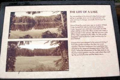 The Life of a Lake Marker image. Click for full size.