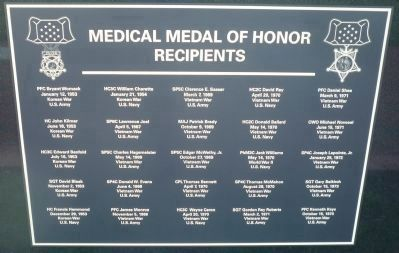 Medical Medal of Honor Recipients - Panel 3 image. Click for full size.