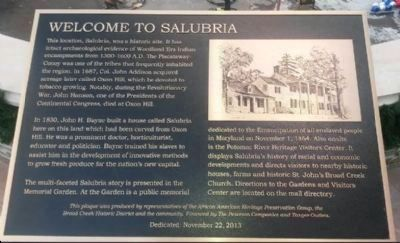"Panel 1: ""Welcome to Salubria"" image. Click for full size."