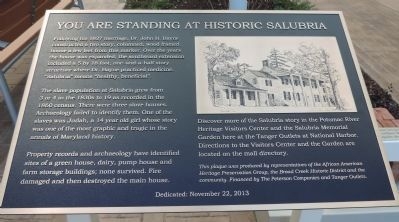 "Marker Panel 2 - ""You Are Standing at Historic Salubria"" image. Click for full size."