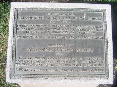 California Avocado Society Thanks Guatemala Marker image. Click for full size.