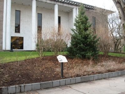 The Danbury Public Library Marker image. Click for full size.