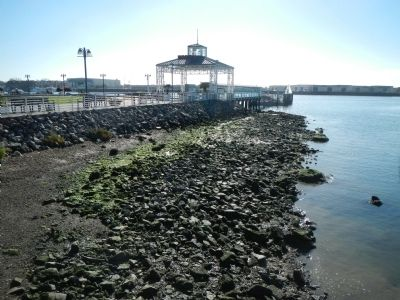 Oakland Ferry Terminal image. Click for full size.