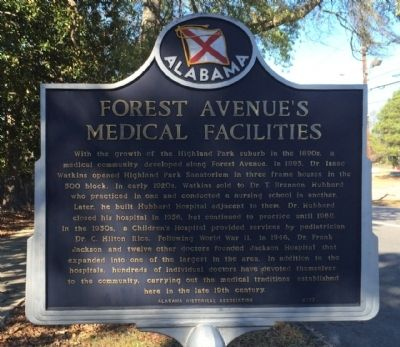 Forest Avenue's Medical Facilities Marker image. Click for full size.