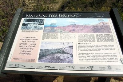 Natural Seep Springs Marker image. Click for full size.