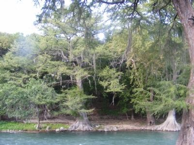Guadalupe River image. Click for full size.