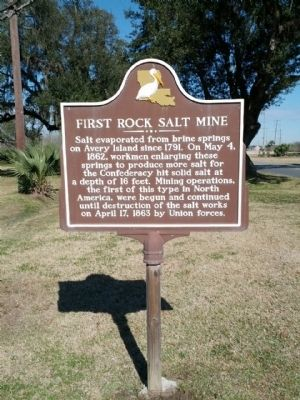 First Rock Salt Mine Marker image. Click for full size.