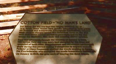 "Cotton Field – ""No Man's Land"" Marker image. Click for full size."