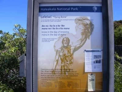 "Leleiwi ""Flying Bone""-marker at beginning of trail image. Click for full size."