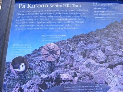 Pa Ka'oao White Hill Trail Marker image. Click for full size.