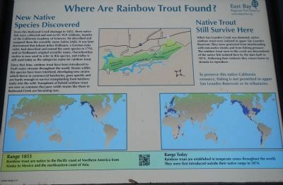 Where are Rainbow Trout Found? image. Click for full size.