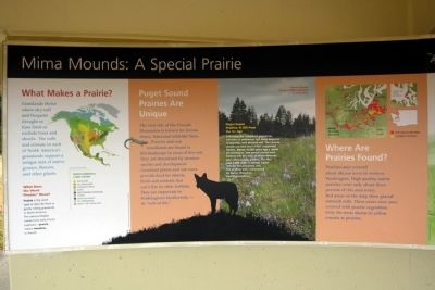 Mima Mounds: A Special Prairie Marker image. Click for full size.
