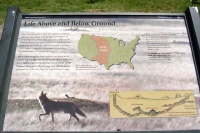 Life Above and Below Ground Marker image. Click for full size.