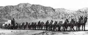 The Twenty-Mule Team Wagon Train image. Click for full size.