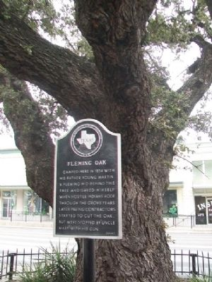 Fleming Oak and Marker image. Click for full size.