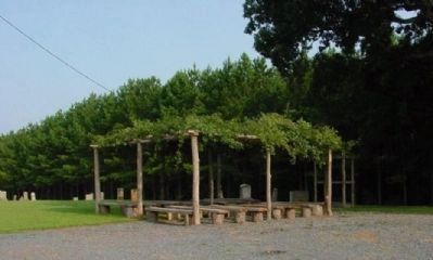 ~ Example of a Brush Arbor ~ image. Click for full size.