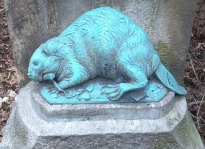 Bronze Beaver image. Click for full size.