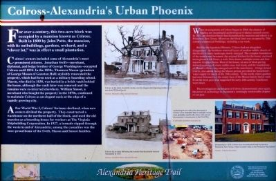 Colross-Alexandria's Urban Phoenix Marker image. Click for full size.