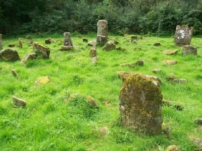 View of Caldragh Graveyard image. Click for full size.