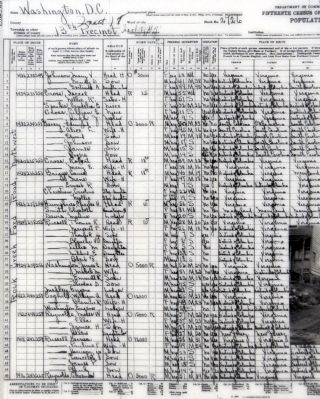 US Census Form image. Click for full size.
