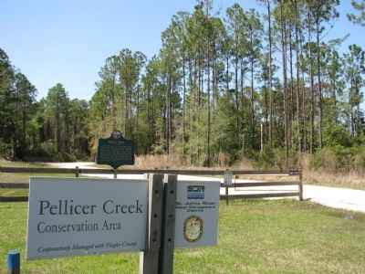 Pellicer Creek Conservation Area image. Click for full size.