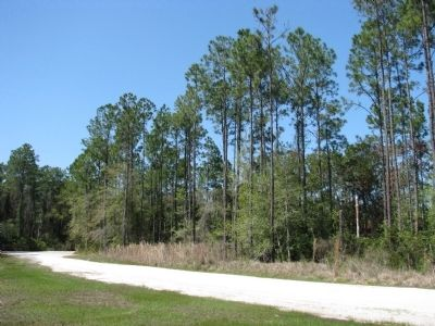 Pellicer Creek Conservation Area (<i>looking north from marker</i>) image. Click for full size.