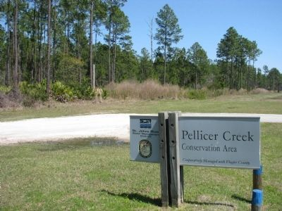 Pellicer Creek Conservation Area (<i>looking south from marker</i>) image. Click for full size.