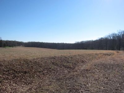 Remains of Confederate Earthworks image. Click for full size.