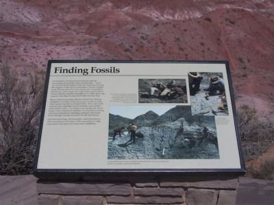 Finding Fossils Marker image. Click for full size.