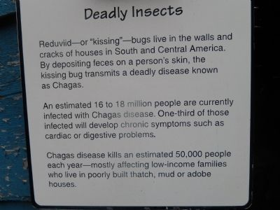 Deadly Insects Marker image. Click for full size.