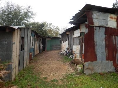 Shacks of people living in poverty. image. Click for full size.