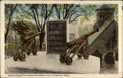 Tercentenary Cannons - Vintage Postcard image. Click for full size.
