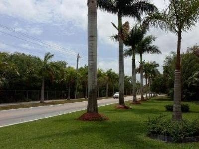 View to south at Old Cutler Road and SW 170 St. image. Click for full size.