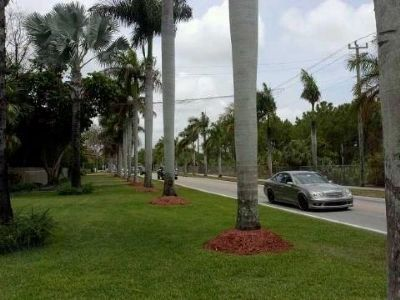 View to north at Old Cutler Road and SW 170 St. image. Click for full size.