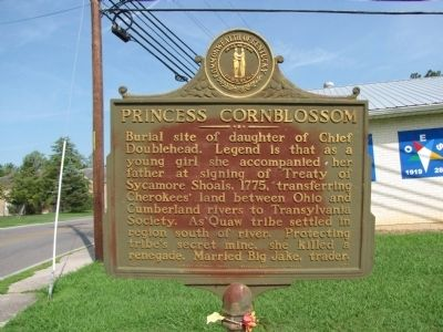 Princess Cornblossom Marker image. Click for full size.