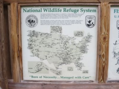 Information Display At The Great Swamp Visitor Center image. Click for full size.