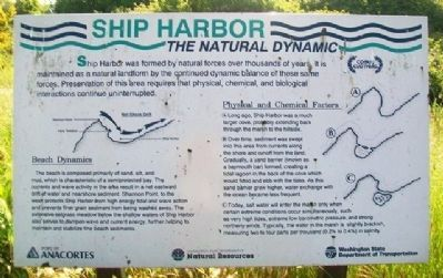 Ship Harbor: The Natural Dynamic Marker image. Click for full size.