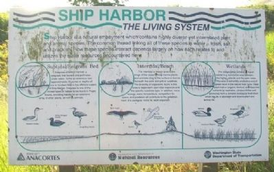 Ship Harbor: The Living System Marker image. Click for full size.