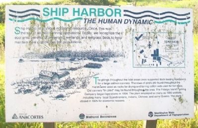 Ship Harbor: The Human Dynamic Marker image. Click for full size.