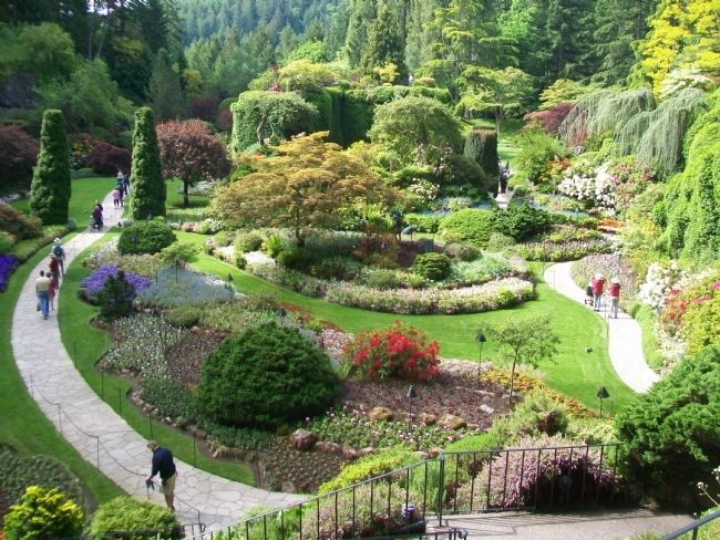 Sunken Garden at The Butchart Gardens image. Click for full size.